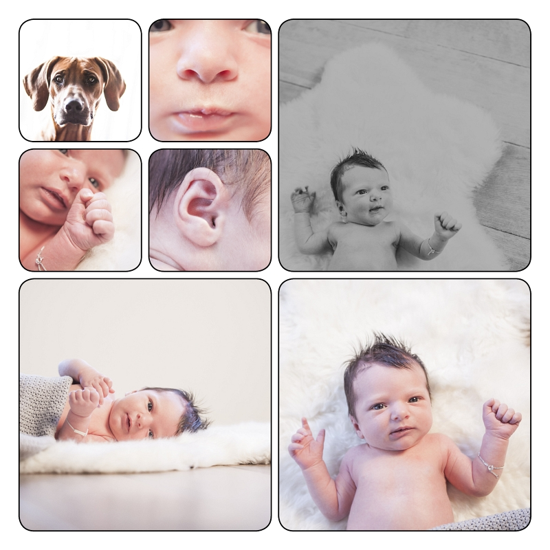 12 Newborn